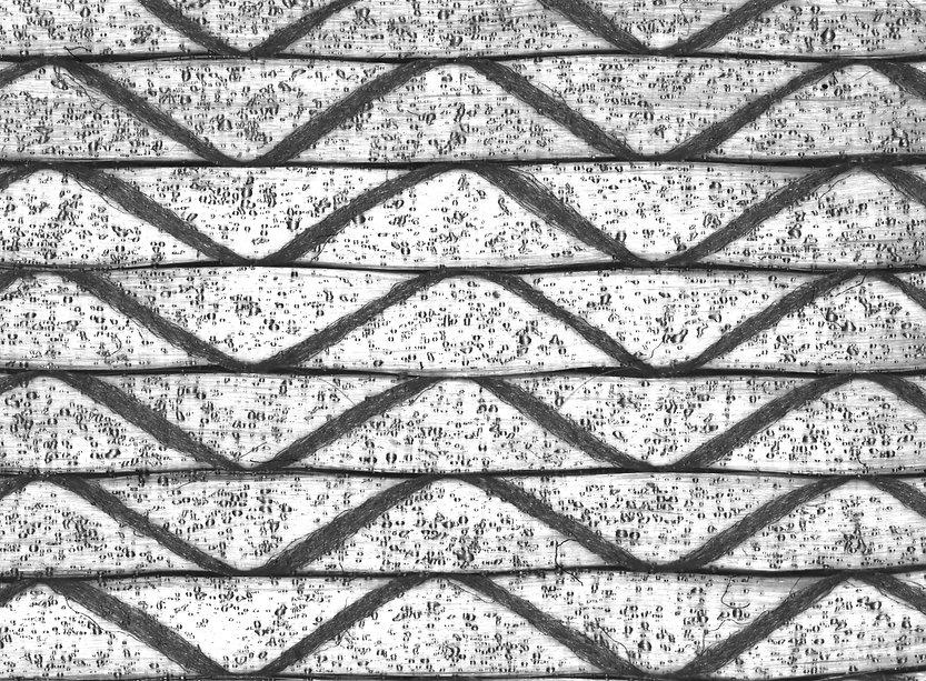 Glasfasergelege mit Bindertropfen unter Spezialbeleuchtung