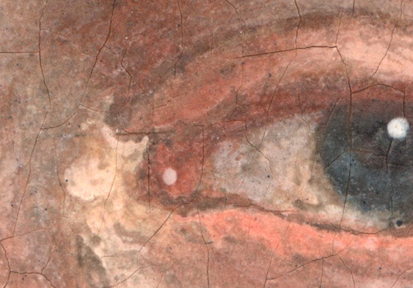 Ölbild mit starker Vergrößerung zeigt Sprünge in der Farbe, das lässt auf hohes Alter des Bildes schließen. Eine Anwendung der Microskop Kamera von Fa. Robomat