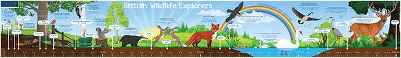 2m Wall Sticker - British Wildlife Explorers