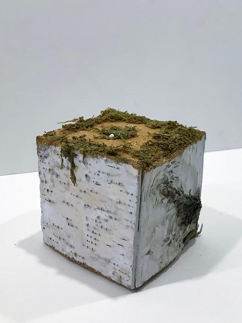Куб Birch