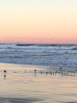 Morro Bay at Sunrise