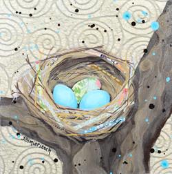 Teal Nest