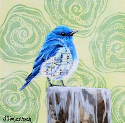 Musical Bluebird