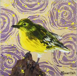Pine Warbler on Purple