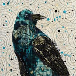 Rakish Raven
