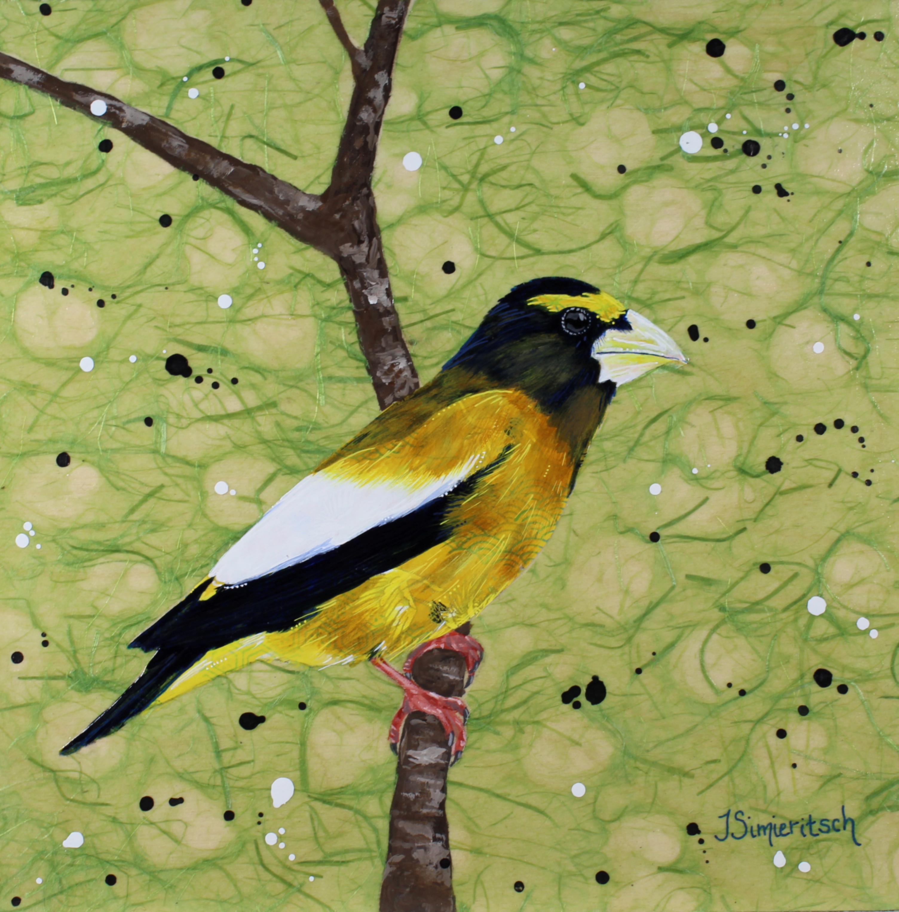 Grosbeak on Green
