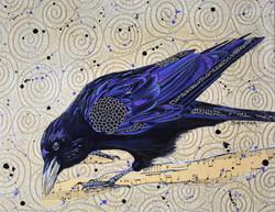 Musical Raven