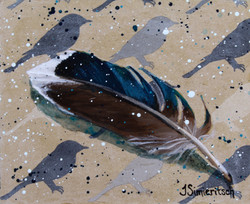 Find a Feather