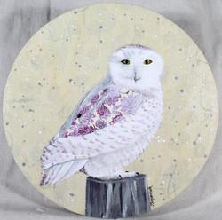 Violet Snowy Owl
