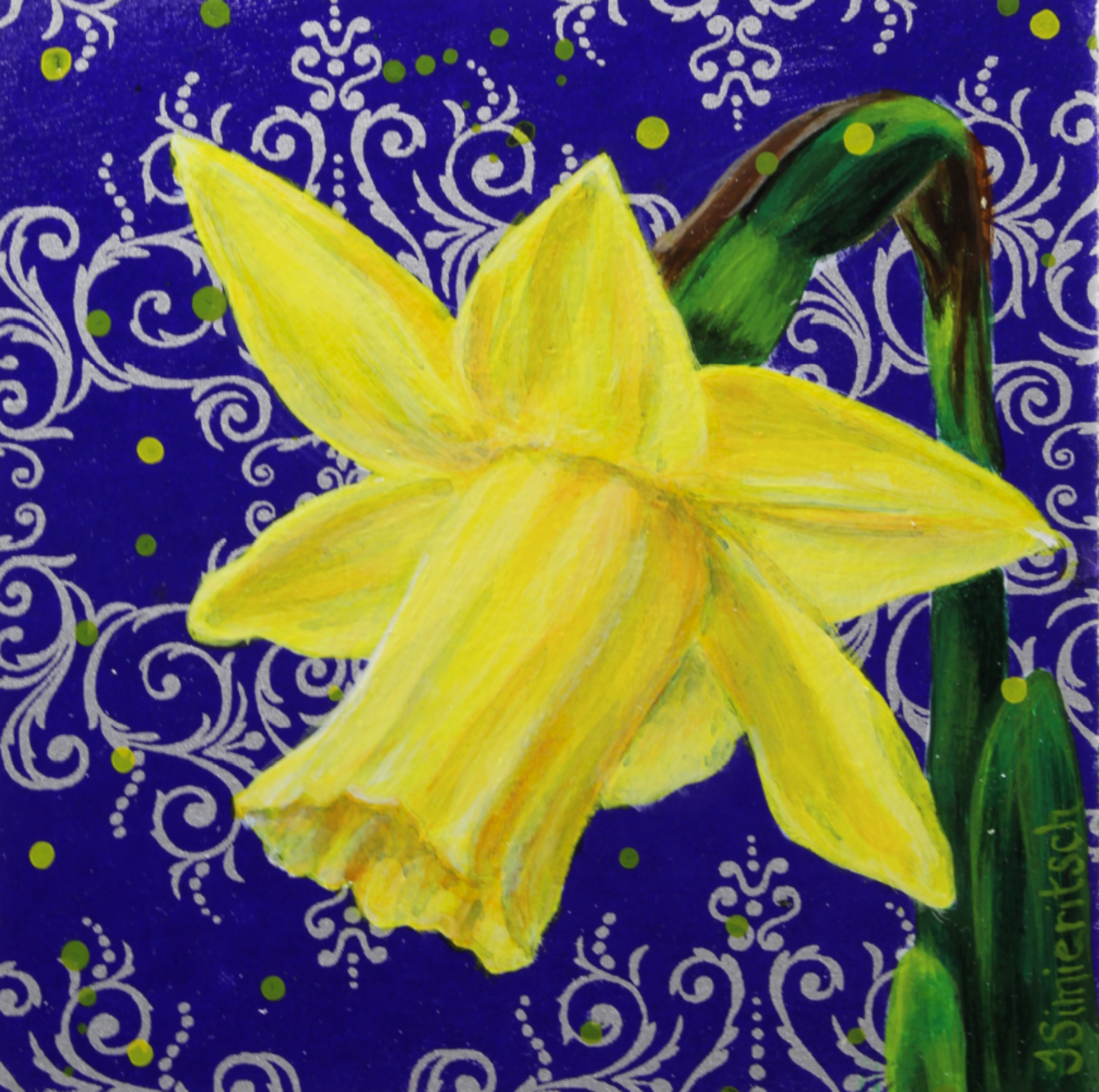 Daffodil in the Dining Room