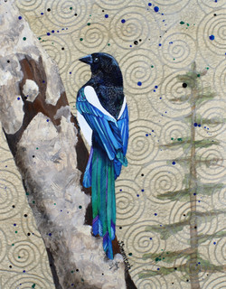 Magpie Muse