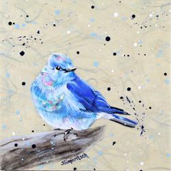 Floral Bluebird