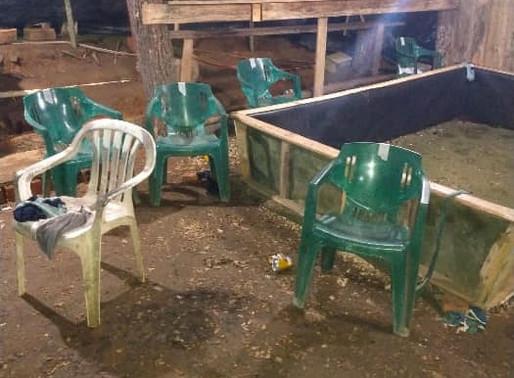 Após denúncias, PM fecha rinha de galo em Pomerode