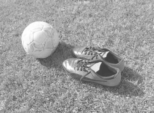Portaria regulamenta retorno do  Catarinense de Futebol