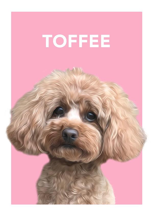 toffee oil modern.jpg
