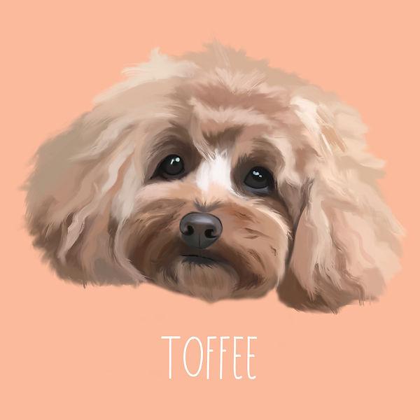 square toffee.jpg