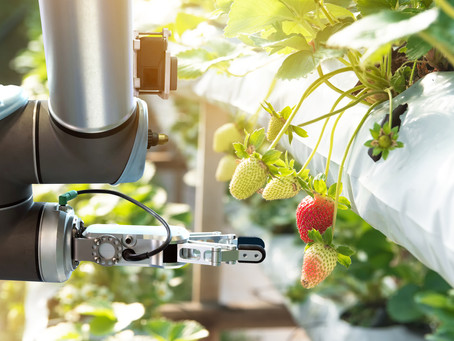 The Welcomed Invasion of Agricultural Robots