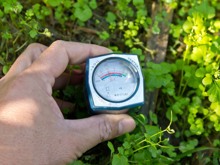 Agritech: Soil Water Sensors