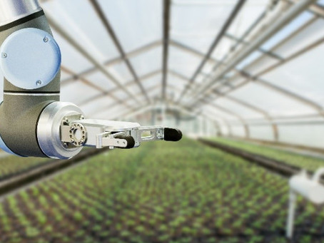 Agritech artificial intelligence- Bio secure growing to avoid heavy metal contaminates.