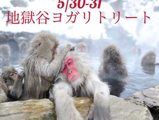 猿だ!長野だ!温泉だ!全員集合!!「地獄谷ヨガリトリート」のお知らせ