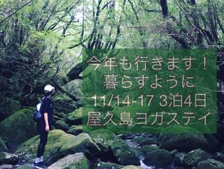 暮らすように11/14-17 3泊4日屋久島ヨガリトリート開催いたします。
