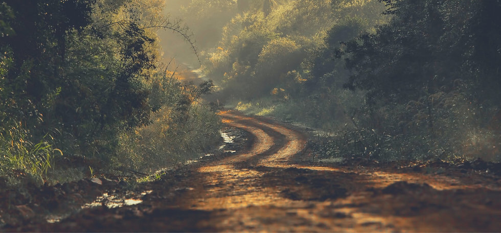 Dirt Road Background - Cropped