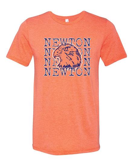 Newton Repeat