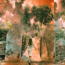 Sarah La Puerta - Strange Paradise