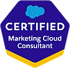 Marketing-Cloud-Consultant (1).png