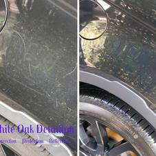 Range Rover Paint Correction