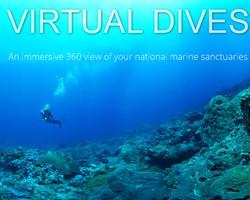 Virtual Dives