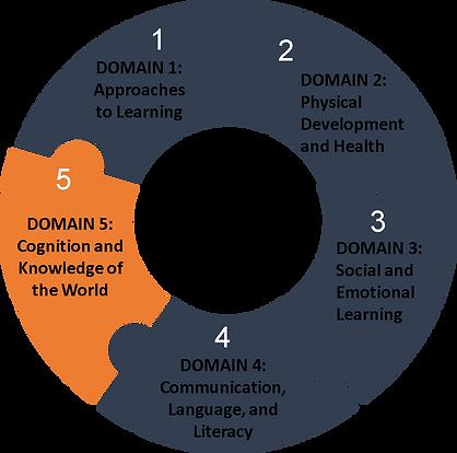 Domain 5 orange circle.png