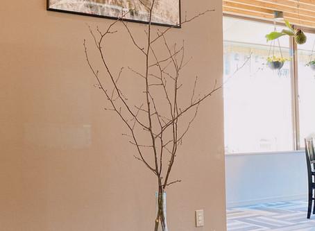 軽井沢のお花見は4月中旬頃