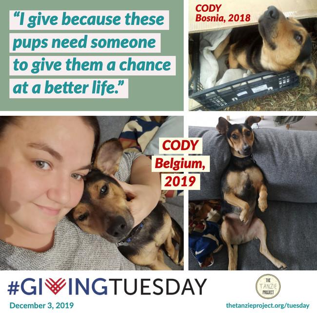 Cody of Bosnia