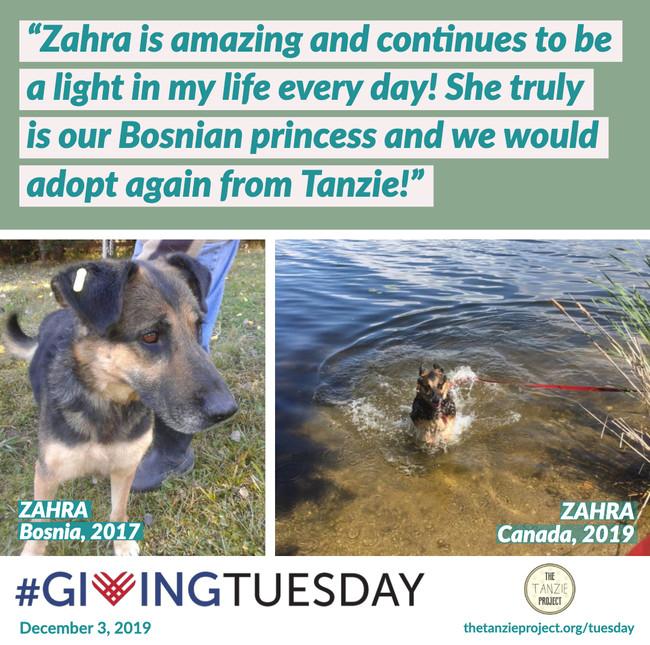 Zahra of Bosnia