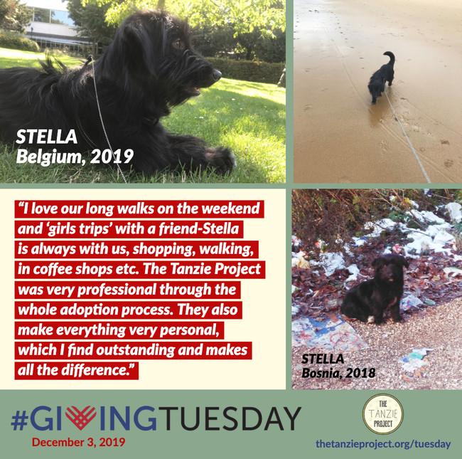 Stella of Bosnia
