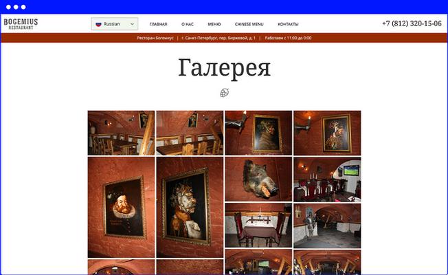 Галерея сайта www.bogemius.ru