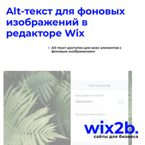 Как привлечь дополнительный поисковый трафик при помощи уже размещенных на Wix-сайте картинок