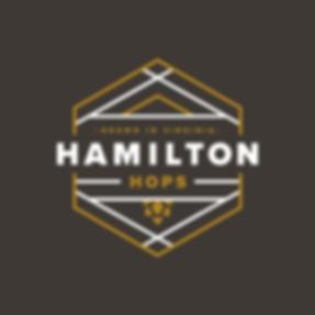 HamiltonHops.GIF.Slide.Dark.png