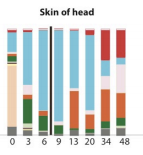 Post-mortem microbial clock in eLife