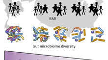 Immigrant Microbiome paper published in Cell