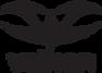 valken-logo-small-png.png