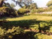 img-9875-1_orig.jpg