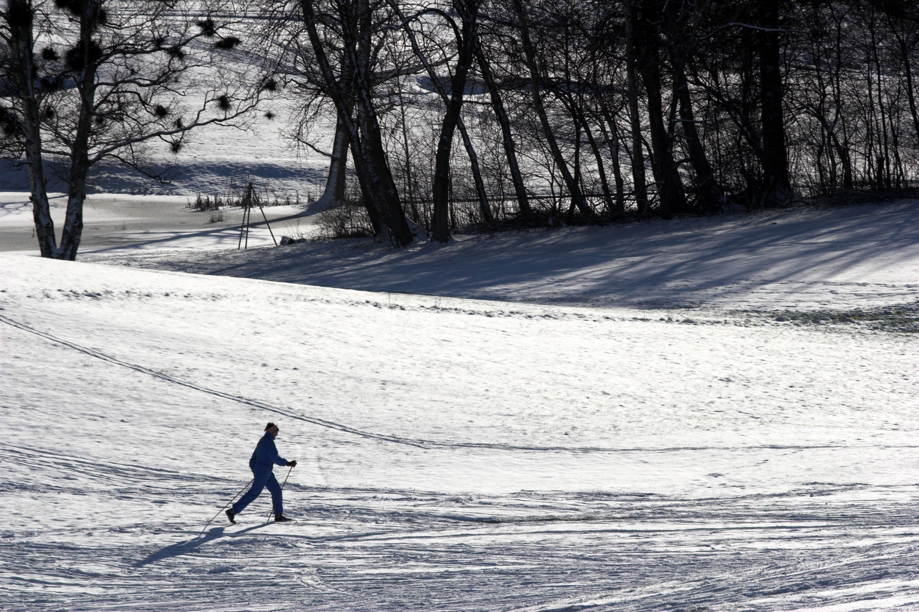 Skiløper 1.jpg