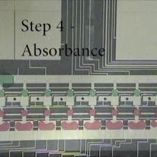 Algae Lipid Screen Shih 2014