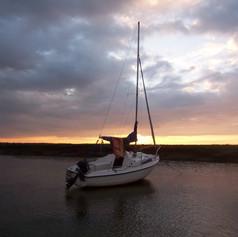 Seahawk at sunset