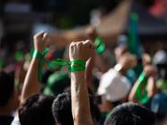 О зелёной политике, экоэнтузиазме и будущем