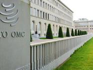 В ВТО достигнуто соглашение о возможной отмене патентов на вакцины от Covid