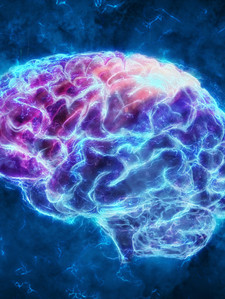 О чём «думает» мозг во сне