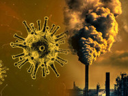 Загрязнение окружающей среды и рост заболеваний Covid-19